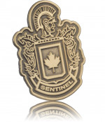 Antiqued Gold Customized Shape Lapel Pin
